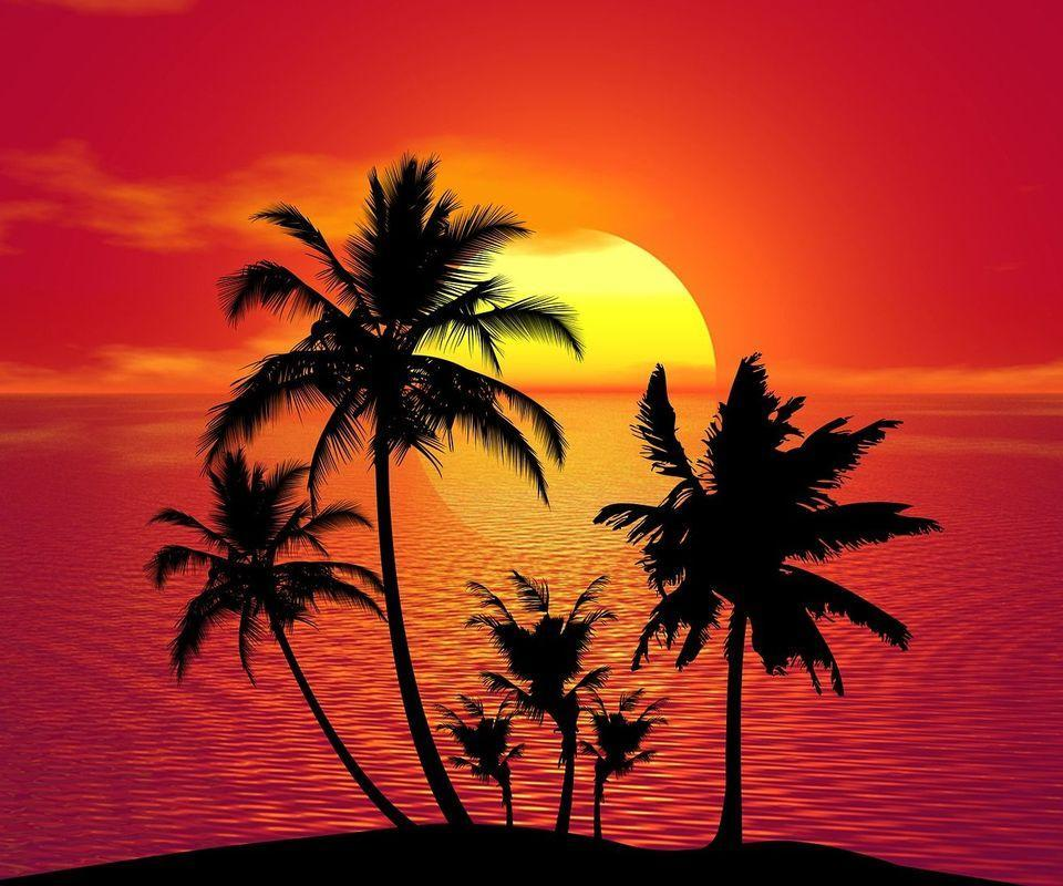 63 Wallpaper Hp Sunset HD Terbaik