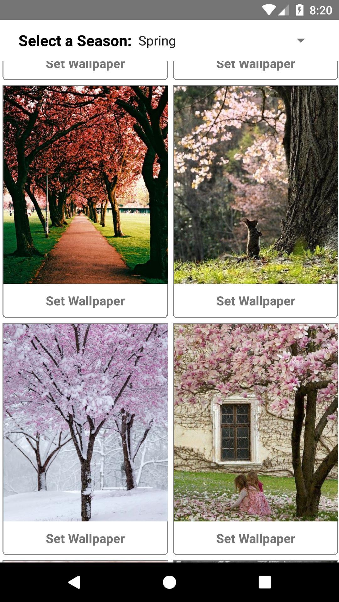 Beautiful 4 Seasons Full Hd Wallpaper Free For Android Apk