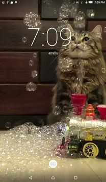 Cats & Bubbles Live Wallpaper screenshot 1