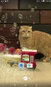 Cats & Bubbles Live Wallpaper screenshot 3