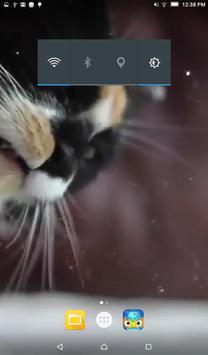 Cat Lick Screen Live Wallpaper apk screenshot