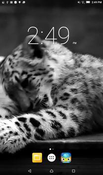 Snow Leopard Live Wallpaper poster