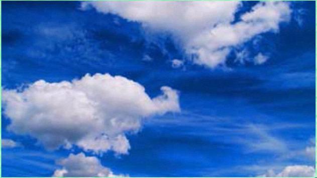 Stunning Nature Images screenshot 1
