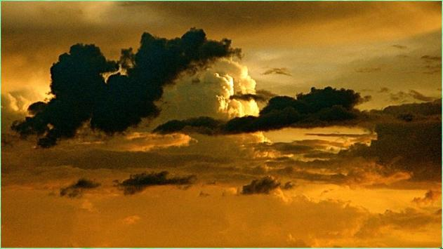 Stunning Nature Images apk screenshot