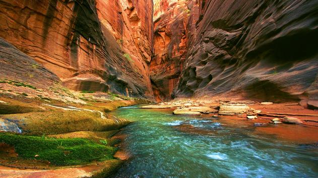 Nature hd wallpapers for android apk download - Nature wallpaper apk ...