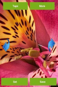 Flowers Wallpapers apk screenshot
