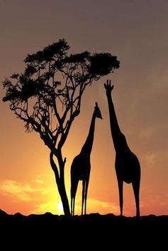 Africa Wallpapers HD apk screenshot