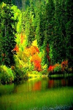 Nature Wallpapers HD apk screenshot