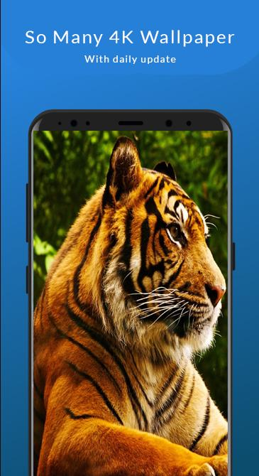 4k Animal Wallpaper For Android Apk Download