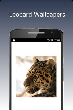 Leopard Wallpapers poster