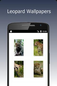 Leopard Wallpapers screenshot 1