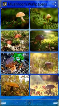 Mushroom Wallpapers:background images poster