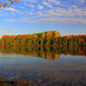 Reflection Backgrounds icon