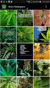 Weed Wallpapers and Background screenshot 13