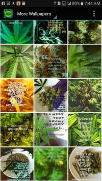Weed Wallpapers and Background screenshot 3
