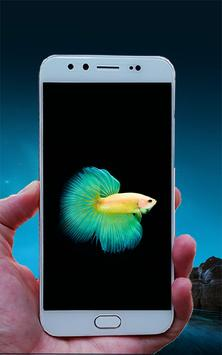 Wallpapers For Vivo Y35 For Android Apk Download