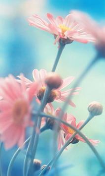 Wallpapers of love HD screenshot 11