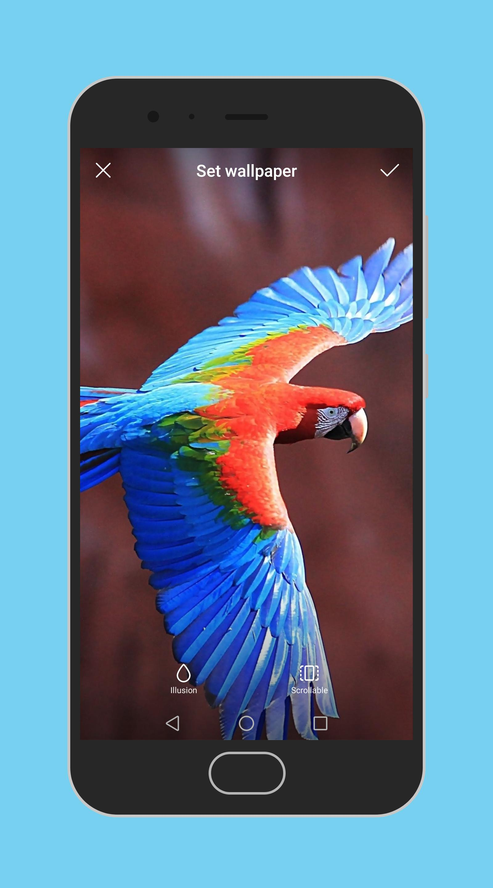 Wallpapers - Pocophone F1 for Android - APK Download