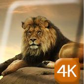 Gorgeous Lion 4K Live Wallpap icon