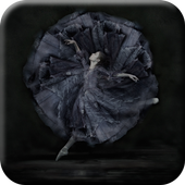 Ballet Dance Wallpapers icon