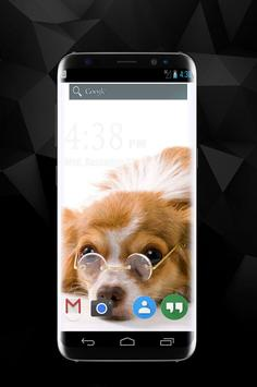 Funny Dog Wallpapers apk screenshot