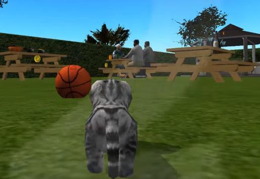 Kitten Cat Simulator - NEW apk screenshot