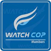 WatchView icon