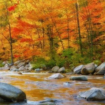 Autumn Water LWP screenshot 2