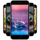 Water Drops Wallpapers icon