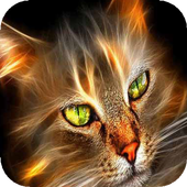 Green eyed cat live wallpaper icon