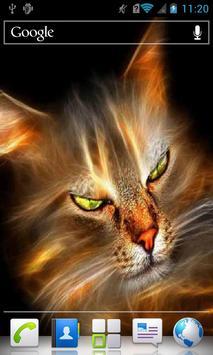 Green eyed cat live wallpaper apk screenshot