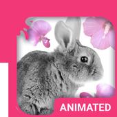 Cute Bunny Animated Keyboard icon