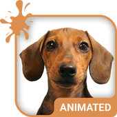 Doggy Dream Animated Keyboard icon