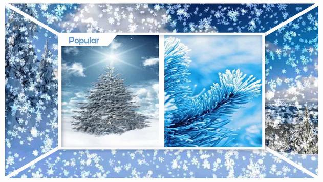 Cool Winter Wallpaper apk screenshot