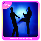 Best Martial Arts Training icon