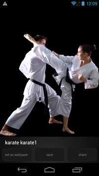 Karate Wallpapers Picture apk screenshot