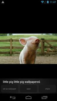 Cute Little Pig Wallpapers HD apk screenshot