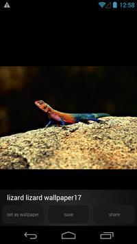 Lizard Wallpapers Pictures apk screenshot