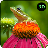 Funny Frog Live Wallpaper icon
