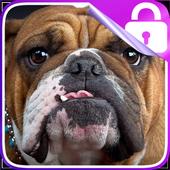 Bulldog Lock Screen icon