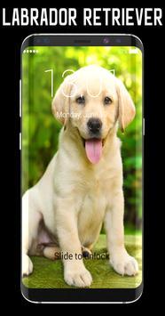 Labrador Retriever Lock Screen poster
