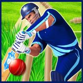 Best Cricket Championship icon