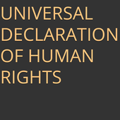 UDHR Human Rights icon
