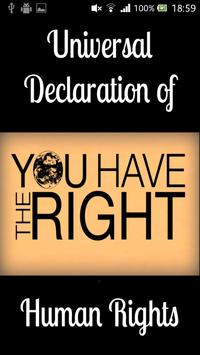 UDHR Human Rights poster