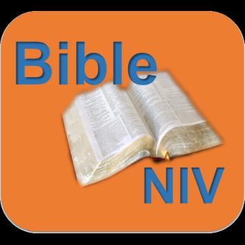 Holy Bible(NIV) poster