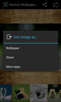 Animal Wallpaper HD apk screenshot