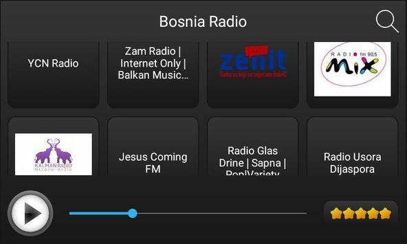 Radio Bosnia poster