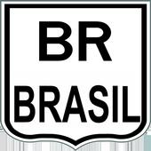 BR BRASIL icon