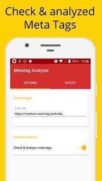 Metatag Analyzer Cartaz