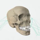 EOC Cranium icon